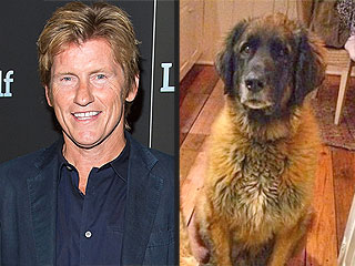 Denis Leary: My Close Call with a Bear