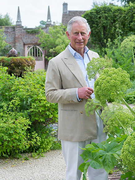 Proud Grandpa Prince Charles Transforms His Garden into a Royal Playground: 'He Comes Alive Around Little George'  The British Royals, The Royals, Prince Charles, Prince George