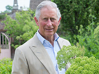 Proud Grandpa Prince Charles Transforms His Garden into a Royal Playground: 'He Comes Alive Around Little George'