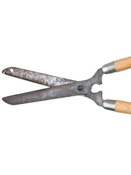 Man Allegedly Cuts Off Wife's Lover's Genitals with Garden Shears