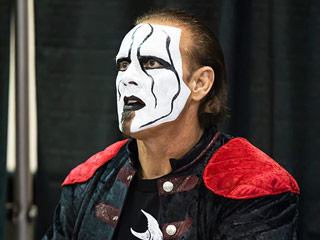 Pro Wrestler Sting Injured at WWE 'Night of Champions'