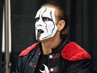 Pro Wrestler Sting Injured at WWE 'Night of Champions'