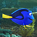 FROM EW: Spot Them Anwyhere? Dory Sets Out to Find Her Family in New Finding Dory Trailer