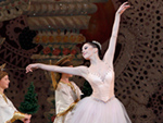 Armpit Paint and Stage Fright: The Secrets Behind Being The Nutcracker's Sugar Plum Fairy