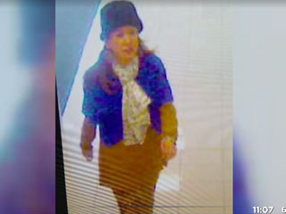 Long Island Police Looking for Woman Who Allegedly Tried to Abduct Baby from Mall