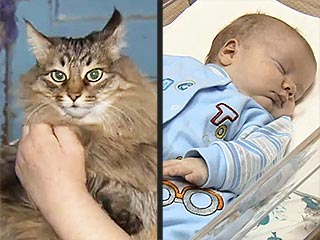 Hero Cat Saves Baby from Freezing to Death