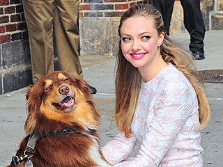 So ... Who's Amanda Seyfried's Valentine This Year?
