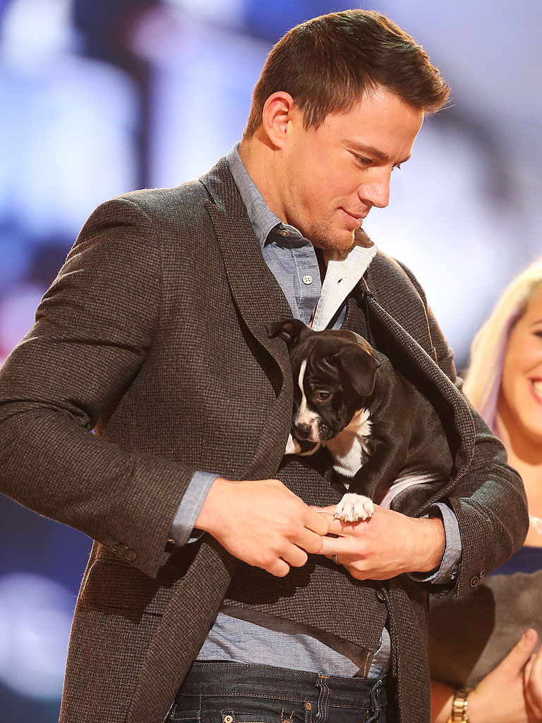 Channing Tatum Zac Efron Pose For Adorable Puppy Pics