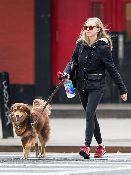 POOCH PATROL photo | Amanda Seyfried
