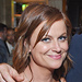 Amy Poehler, Justin Theroux, Rihanna & More!