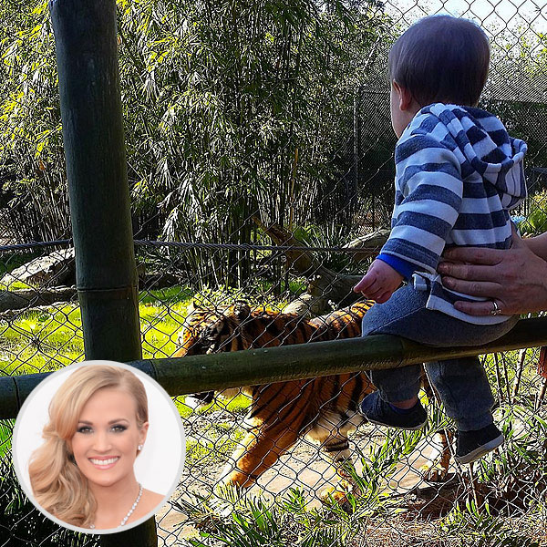Carrie Underwood son Isaiah tiger photo