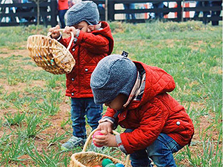Zoë Saldana's Twins Hunt For Easter Eggs in Adorable, Matching Ensembles