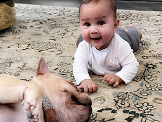 Puppy Love! Chrissy Teigen Shares Luna's Playdate with French Bulldog Pippa