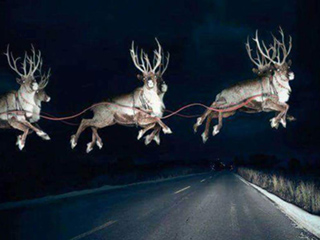 Santa Sighting! Indiana Police Officer Catches Photo of Santa's Sleigh