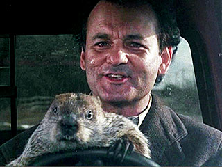 10 Life Lessons You Can Learn from Groundhog Day