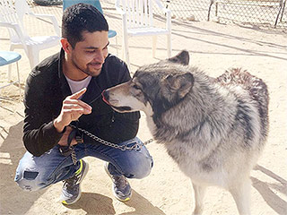 Selfies with Wolves: Demi Lovato and Wilmer Valderamma Celebrate His Birthday at a Wolf Sanctuary