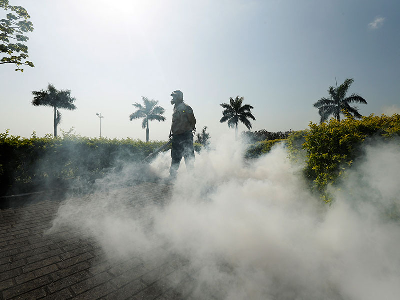 Three Pregnant Women in Florida Test Positive for Zika Virus  Pregnancy, Medical Conditions, Pregnancy