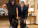 'Champagne Room' and Doggie Jerseys: How the Obamas Throw a Super Bowl Party
