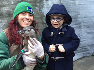 See the Adorable Moment Anna Faris and Chris Pratt's Son Jack Met the Penguin He Named Eagle