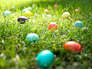 Easter Egg Hunt Reportedly Descends Into a 'Mess' as Parents Allegedly Trample and Steal Candy from Kids