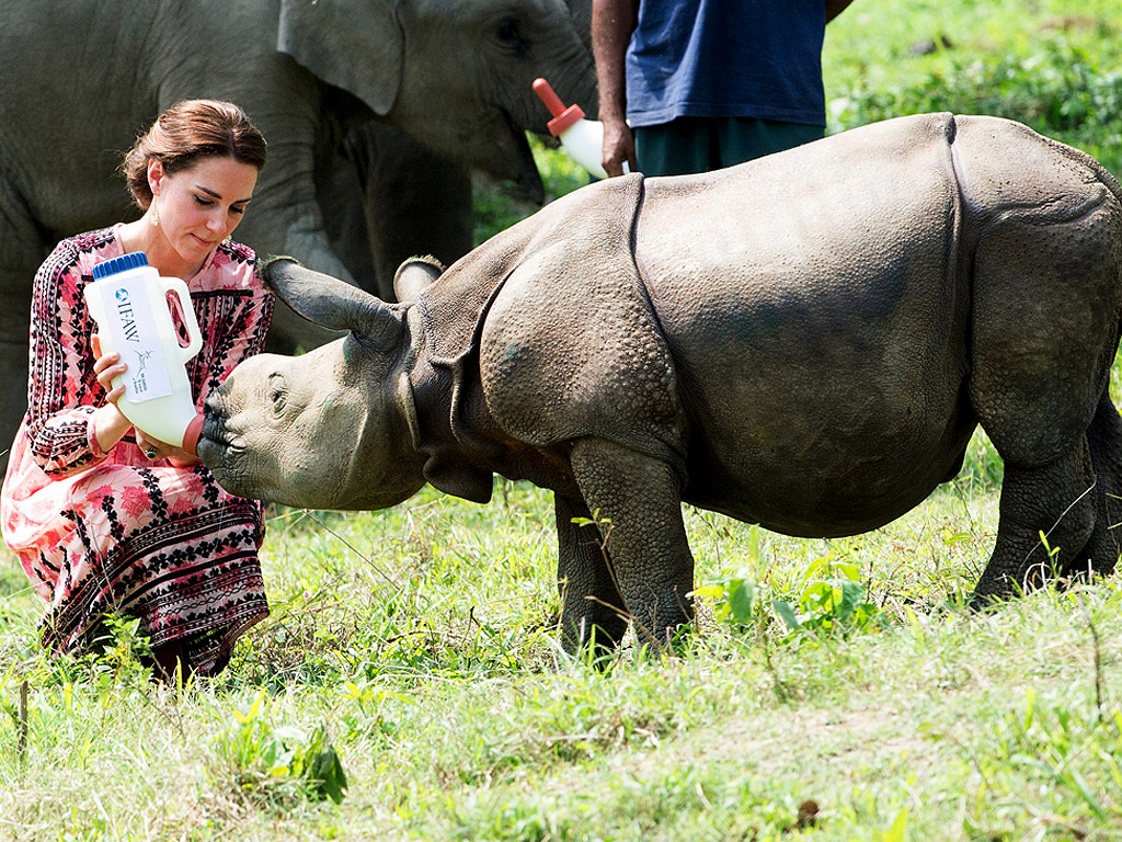 Royals Tour India: Princess Kate and Prince William Feed Baby Rhino