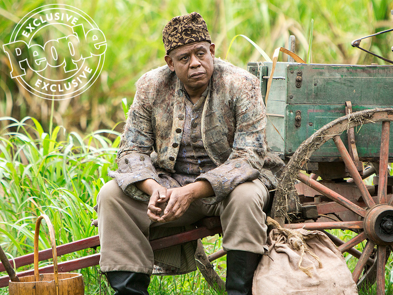FIRST LOOK: Meet the Powerful New Cast of History's Roots| History Channel, Roots, People Picks, TV News, Forest Whitaker