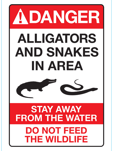 Alligator That Snatched 2-Year-Old Boy at Disney World Has Been Killed, Florida Wildlife Officials Confirm| Animals & Pets, Real People Stories