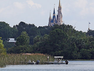 Firefighters Had Been Feeding Alligators Near Disney World Lagoon Where 2-Year-Old Was Snatched, Emails Reveal