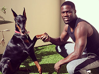 The (Hilarious!) Reason Kevin Hart Says He Can't Be Naked Around His Dogs