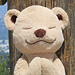 Meet the Adorable Teddy Bear That's Helping Kids Learn About Yoga