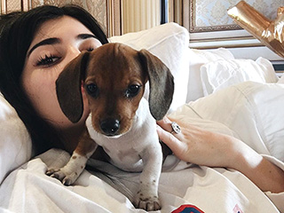 Surprise! Kylie Jenner Gets (Another) New Puppy as an Early Birthday Present