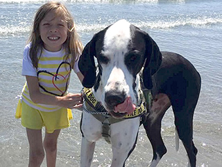 Little Girl with Rare Disease and Her Service Dog Have a Special Friendship: 'I Pretty Much Love Everything About Him'