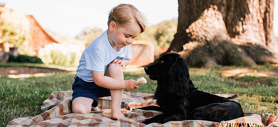 Read the Cover Story: George Turns 3: The Preschool Prince!