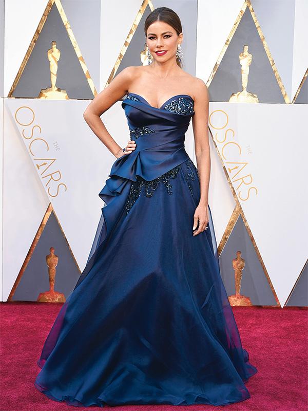 Sofia Vergara Oscars 2016 Marchesa Gown
