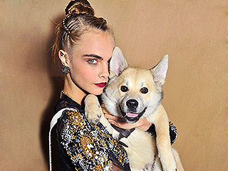 15 Celebrities Guilty of Using Their Pets as Accessories