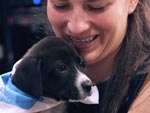 Surprise! Watch PEOPLE Employees Celebrate National Puppy Day