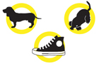 illustration of a dog, sneaker and a mouse