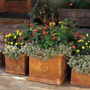 تصميم الحدائق  Pot-gardens-00