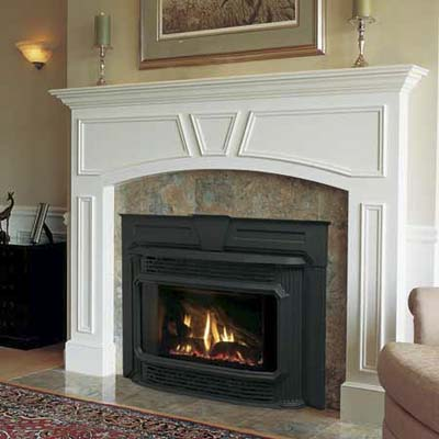 GAS FIREPLACE BLOWER INSERT – Fireplaces