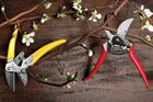 Hand Pruners