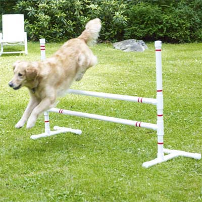 How to Build a Pet Agility Course « JustOneMorePet