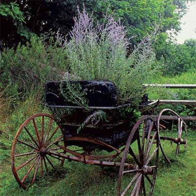 an old horse buggy used as an outdoor planter