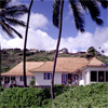 The Honolulu House 1994