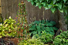 How to Build a Copper Trellis