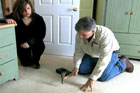 How to Repair Squeaky Floors Through Carpeting