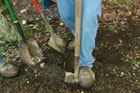 How to Choose and Use Shovels and Other Digging Tools