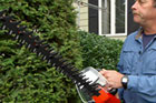 Ask Roger: How to Prune Shrubs