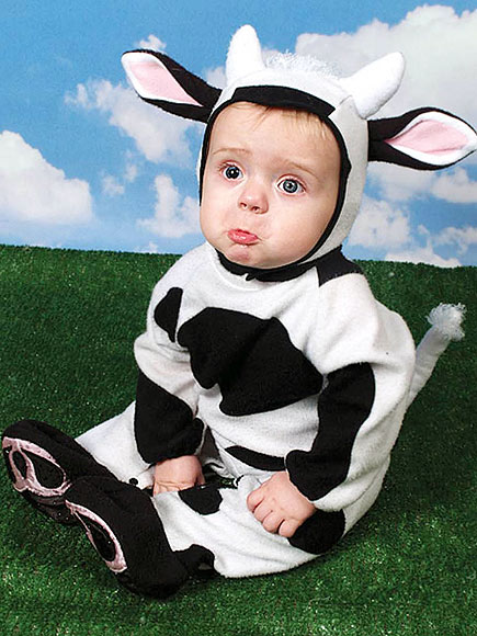 comments 28 - Baby Cow Costume Halloween