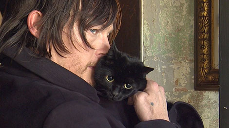 norman reedus poses with his cat and it's adorable